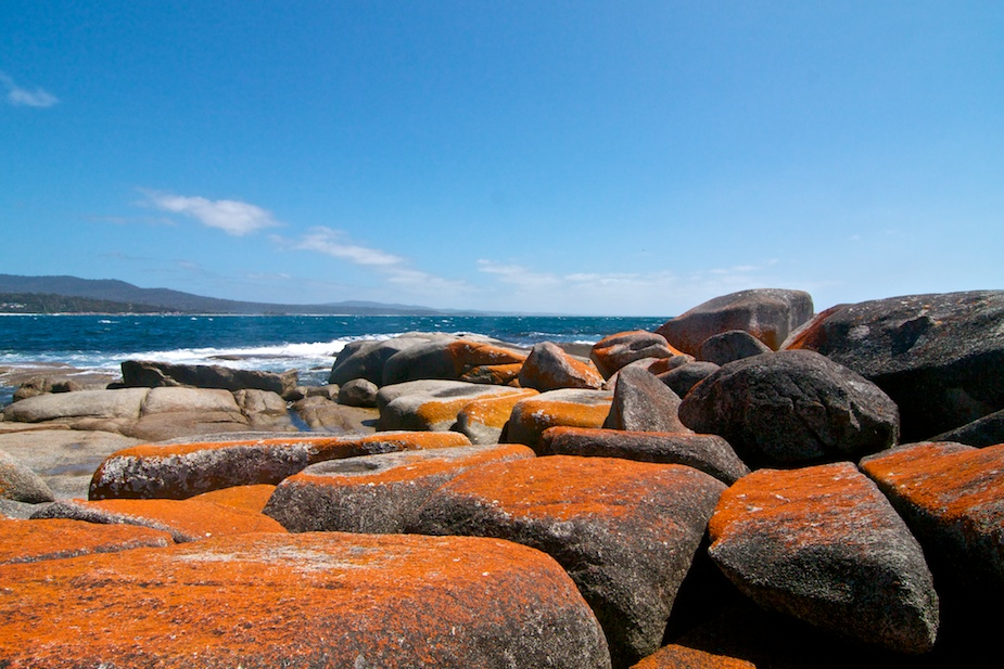 bay of fires-25